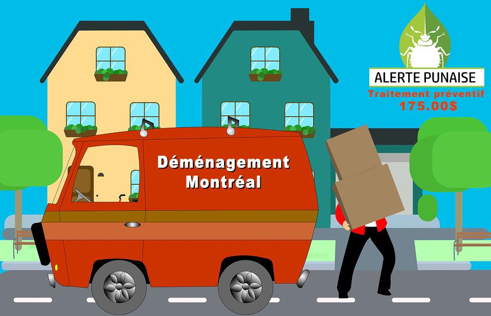 Demenagement Punaise de Lit Montreal