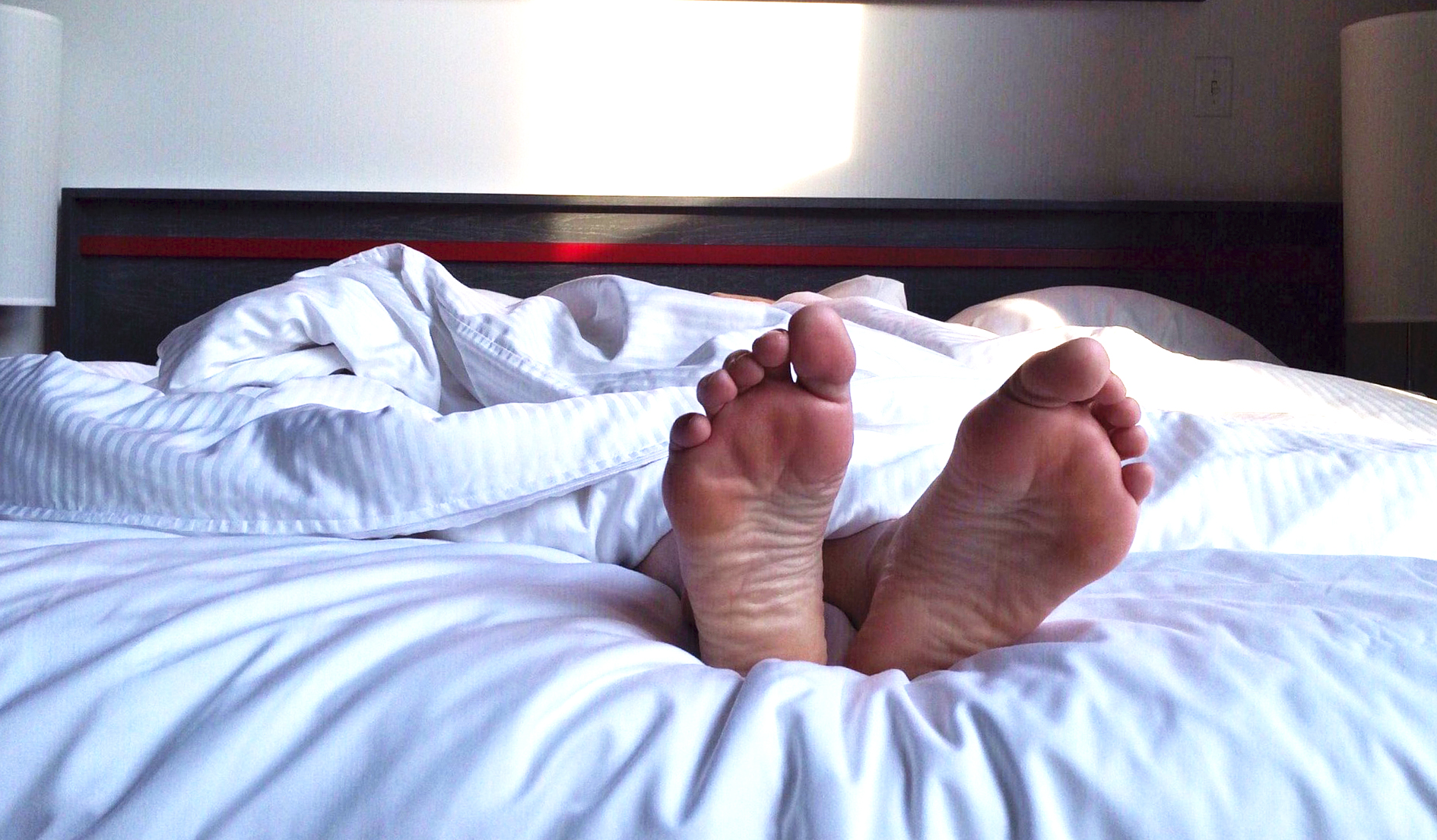 Débarrasser son lit des punaises à Montréal